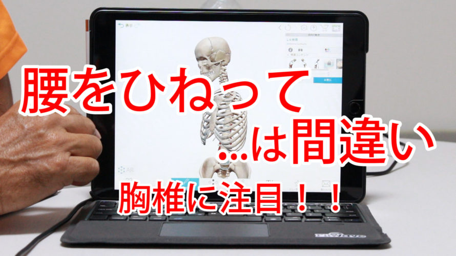 腰をひねって・・は間違い。胸椎に注目!【第7回カラダの為になる学び講座】